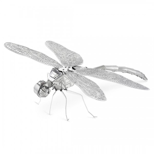 Dragonfly (Libelle)