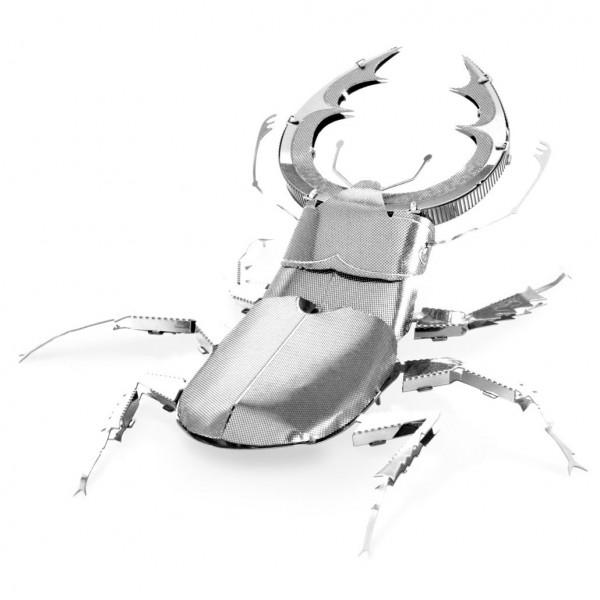 Stag Beetle (Hirschkäfer)