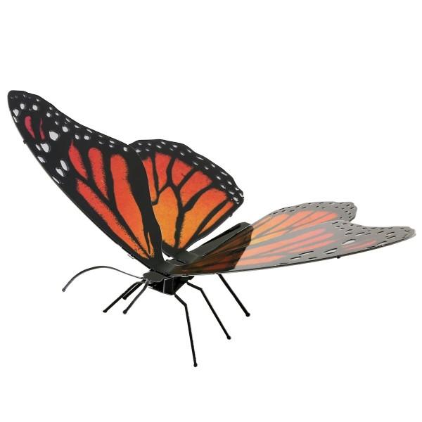 Schmetterling Monarch