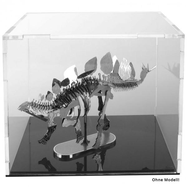 Acrylic Display Cube 1 (10x13x10 cm)